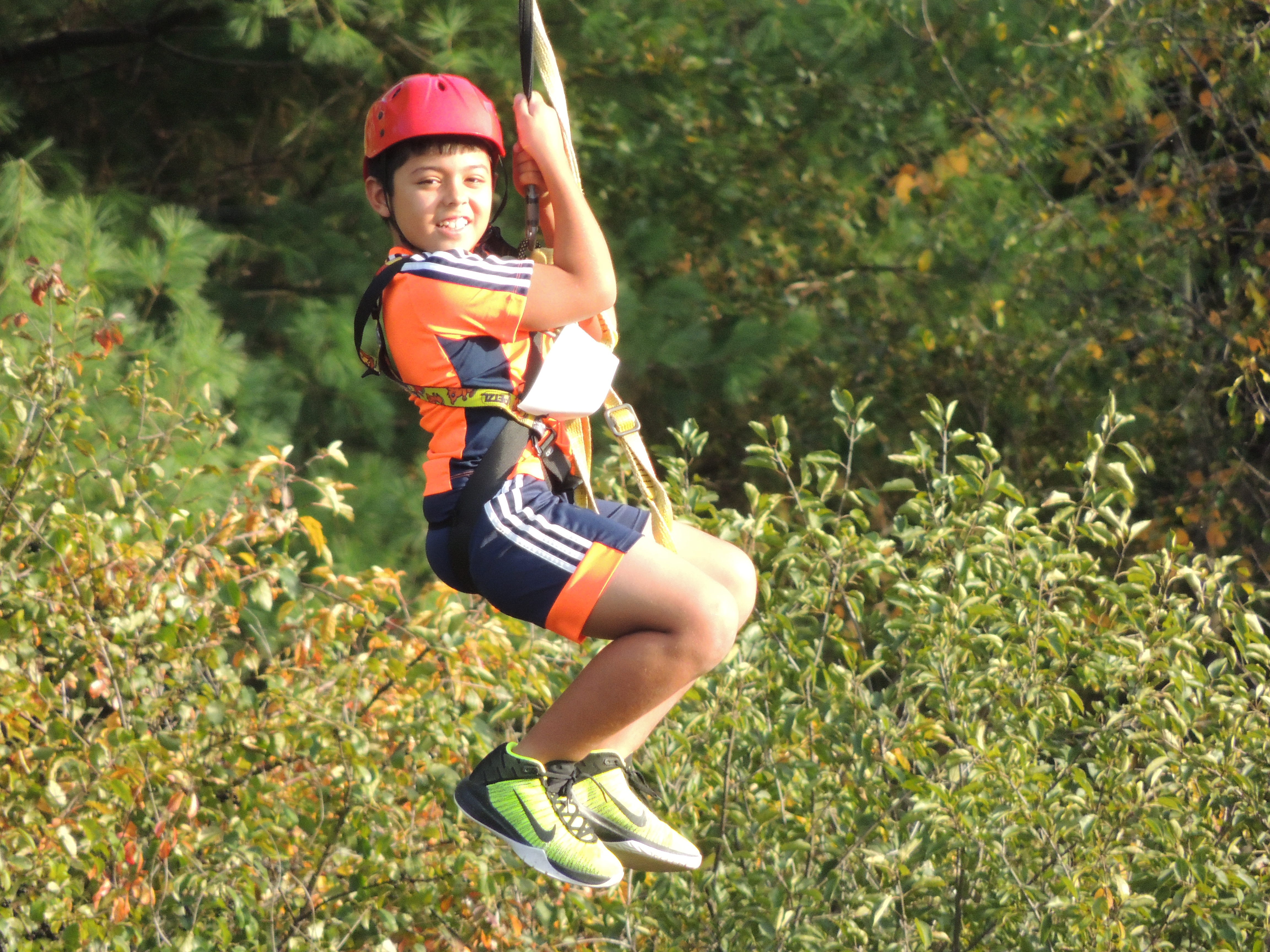 A zip line is a unique adventure that can help push limits and provides a very thrilling ri ...  sc 1 st  WingSpeed Adventures & Zip Lines by Wingspeed Adventures